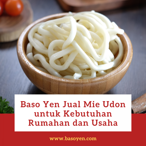 jual mie udon